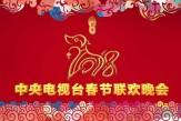 2018#中央电视台#春节联欢晚会 | 2018 #CCTVSpring Festival Gala
